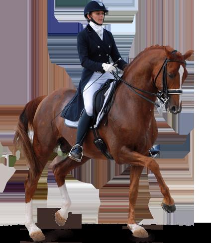 Jeździec Ilona Janas