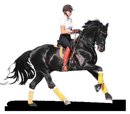 Jeździec Dominika Kraśko-Białek