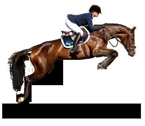 Jeździec Magdalena Prasek