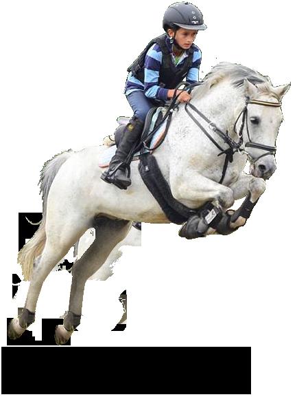 Jeździec Max Parkitny